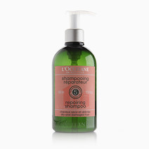 Repairing Shampoo (500ml) by L'Occitane
