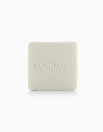 Cedre & Oranger Soap by L'Occitane