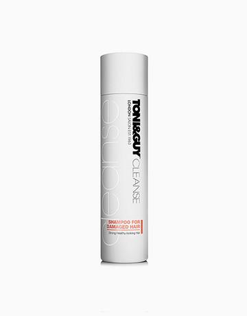 Shampoo for Bleach damaged hair