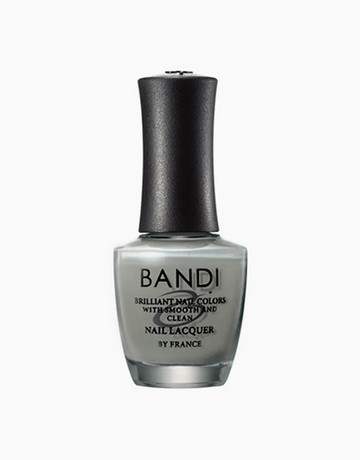 Cashmere Gray by Bandi