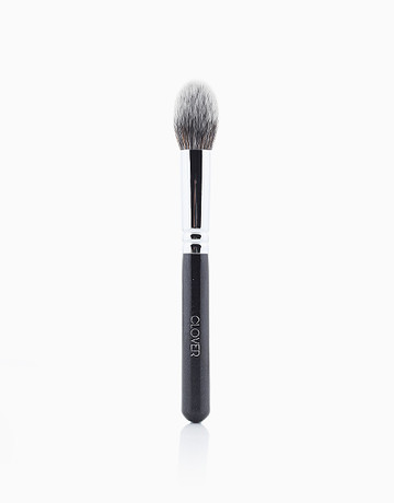 Highlight Brush by Clover Collection
