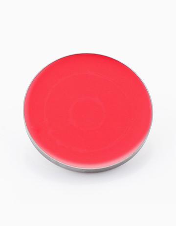 Lip Color Pots: Orange by Suesh