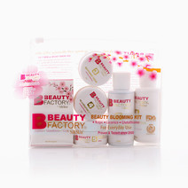 Beauty Factory Beauty Blooming Kit by Silk Skin