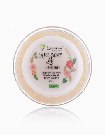 Aloe Honey Lip Exfoliate by Leiania House of Beauty