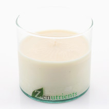 All Is Well Candle (9oz) by Zenutrients