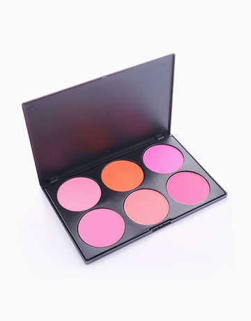 Pro 6 Blush Palette by PRO STUDIO Beauty Exclusives