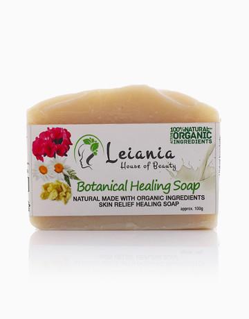 Botanical Healing Soap by Leiania House of Beauty