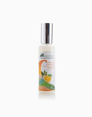 Chamomile Deo Spray (100ml) by Zenutrients