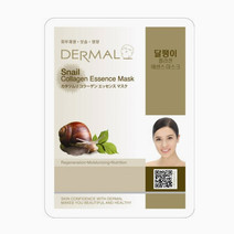 Snail Collagen Essence Mask by Dermal Essence