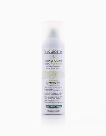 Purifying Dry Shampoo by Evoluderm