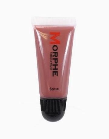 Creme Lip Polish by Morphe Brushes