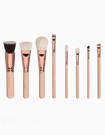 8-Piece Basic Brush Set  by Brush Work