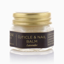 Cuticle & Nail Balm (Lavender) by Black Rose Botanicals