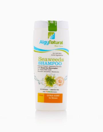 Seaweeds Shampoo by ALGYNATURAL