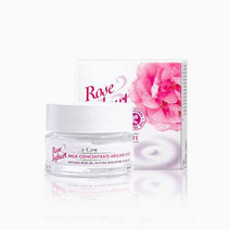 Rose Joghurt Milk Concentrate Around Eyes by Bulgarian Rose in
