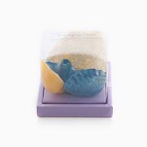 Sea Shell Soap by The Soap Farm