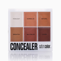 Concealer and Corrector Palette by SFR Color