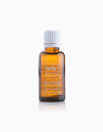 Purifying Extract by Nelly De Vuyst
