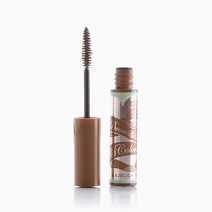 Brow & Lash Colorist by Majolica Majorca