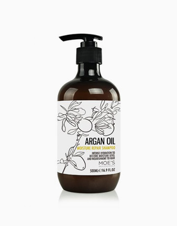 Argan Oil Repair Shampoo by Moe's Professionals