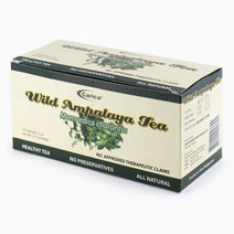 Wild Ampalaya Tea (30 Teabags) by Carica