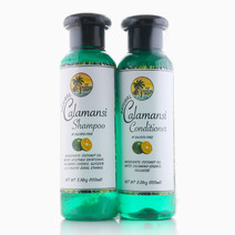 Calamansi Hair Care Set by The Tropical Shop