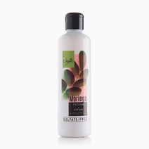 Moringa Sulfate-Free Shampoo by Be Organic Bath & Body