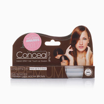 Conceal Gray Hair Roots Semi Permanent by Conceal