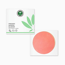 Pressed Mineral Blusher by PHB Ethical Beauty in Blossom (Sold Out - Select to Waitlist)