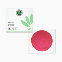 Pressed Mineral Blusher by PHB Ethical Beauty
