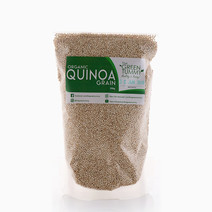 White Quinoa (350g) by The Green Tummy