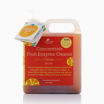 Fruit Enzyme Cleaner by Escents PH