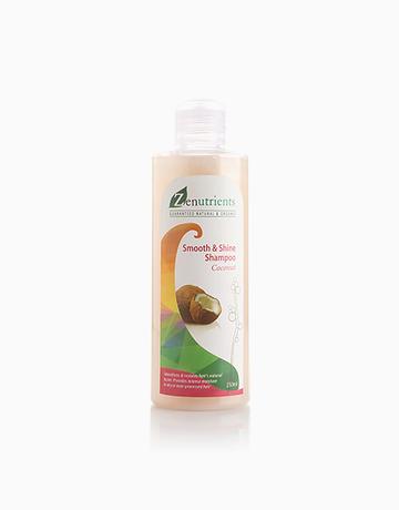 Coconut Shampoo by Zenutrients
