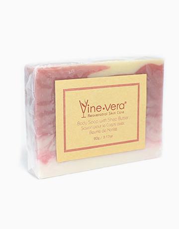 Body Soap by Vine Vera