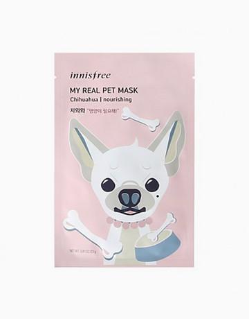 Chihuahua Nourishing Mask by Innisfree