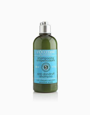 Anti-Dandruff Shampoo by L'Occitane