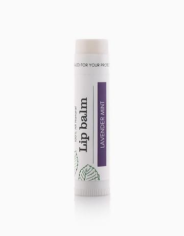 100% All Natural Lip Balm by Organature