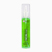 Blushing beauty facial mist   green clover