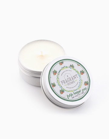 Fresh Baguio Pine (2oz) by Fragrant Home Candles