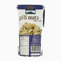 Rains delicacies pili nuts (sea salt)
