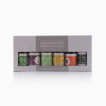 Essential Oil (Set of 6) by Resveralife